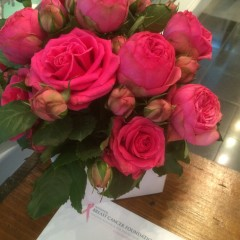 pink roses for breast cancer research