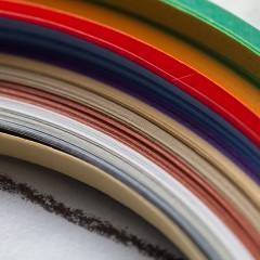 Colour floristry design