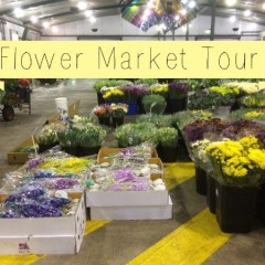 Bloom College flower market tours